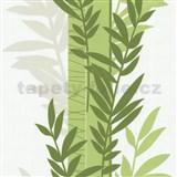 Tapety na stenu Novara - konáre zelené