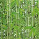 Vinylové tapety bambus