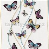 Papierové tapety na stenu Dieter Bohlen - motýli tyrkysovo-fialoví