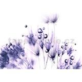 Vliesové fototapety fialové rastliny-rosa, rozmer 312 cm x 219 cm