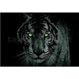 Vliesové fototapety leopard zelené oči