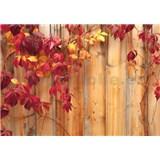 Vliesové fototapety jesenné plot, rozmer 312 x 219 cm