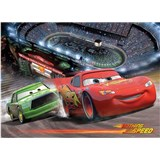 Fototapety Cars race