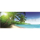 Vliesove fototapety palmy na pláži, rozmer 250 x 104 cm