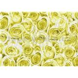 Samolepiace tapety ruže žlté 45 cm x 15 m