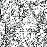 Vliesové tapety na stenu Graphics Alive - konáre stromov čierne