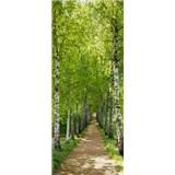 Fototapety brezy