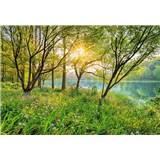 Fototapety Spring Lake
