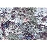 Fototapety Shades, rozmer 368 x 254 cm