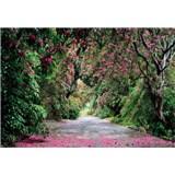 Fototapety Wicklow Park, rozmer 368 x 254 cm