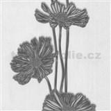 Tapety Lacantara 3 - veľké kvety sivé