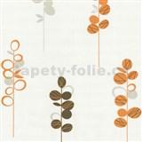 Tapety na stenu Novara - stonky kvetov oranžovo - hnedé