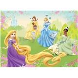 Obraz na stenu Disney princezné 75 x 100 cm