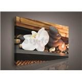 Obraz na stenu orchidea, sviečka 75 x 100 cm