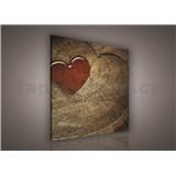 Obraz na stenu srdcia 80 x 80 cm
