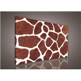Obraz na stenu žirafie kože 75 x 100 cm