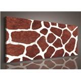 Obraz na stenu žirafie kože 145 x 45 cm
