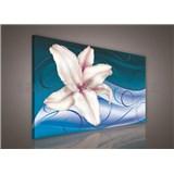 Obraz na stenu ľalie na modrom podklade 75 x 100 cm