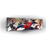 Obraz na stenu Spiderman 145 x 45 cm