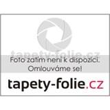 Luxusné tapety na stenu Orpheo - pruhy šedo - biele - ZĽAVA