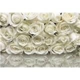 Fototapety ruže biele