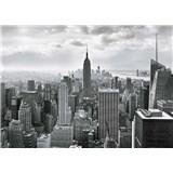 Fototapety New York Black and White, rozmer 368 x 254 cm