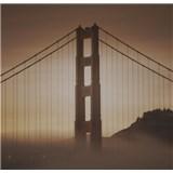 Luxusné vliesové fototapety San Francisco - sépia, rozmer 279 x 270cm