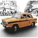 Luxusné vliesové fototapety Delhi - farebné, rozmer 279 x 270cm
