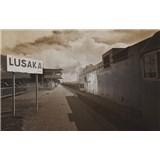 Luxusné vliesové fototapety Lusaka - sépia, rozmer 418,5 x 270cm