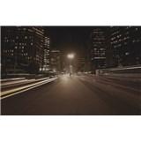 Luxusné vliesové fototapety Sao Paulo - sépia, rozmer 418,5 x 270cm