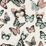 Vliesové tapety na stenu Virtual Vision motýli farební