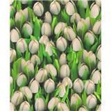 Vinylové tapety na stenu Allure tulipány biele