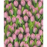 Vinylové tapety na stenu Allure tulipány ružové