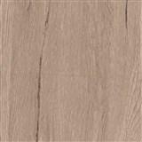 Špeciálne dverové renovačné fólie dub stredný San Diego rozmer 90 cm x 2,1 m (cena za kus)