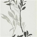Vliesové tapety na stenu IMPOL Wall We Love kvety čierno-sivé na bielom podklade