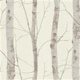 Vliesové tapety na stenu Instawalls kmene stromov s vetvami hnedé na bielom podklade