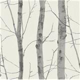 Vliesové tapety na stenu Instawalls kmeny stromov s vetvami strieborné na bielom podklade