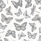 Vliesové tapety na stenu Felicita motýle sivo-strieborné na bielom podklade