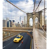 Vliesové fototapety New York rozmer 225 cm x 250 cm