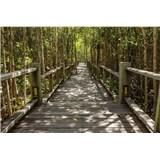 Vliesové fototapety mangrovový les rozmer 375 cm x 250 cm