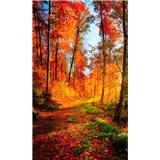 Vliesové fototapety prechádzka lesom rozmer 150 cm x 250 cm