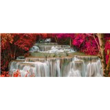 Vliesové fototapety dažďový les rozmer 375 cm x 150 cm