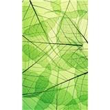 Vliesové fototapety listové žily rozmer 150 cm x 250 cm