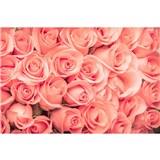 Vliesové fototapety ruže rozmer 375 cm x 250 cm