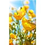 Vliesové fototapety žlté kvety rozmer 150 cm x 250 cm