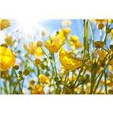 Vliesové fototapety žlté kvety rozmer 375 cm x 250 cm