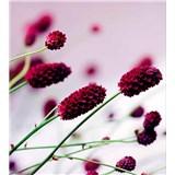 Vliesové fototapety kvetiny fialové rozmer 225 cm x 250 cm