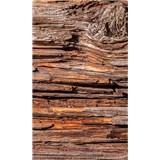 Vliesové fototapety kôra stromov rozmer 150 cm x 250 cm