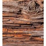 Vliesové fototapety kôra stromov rozmer 225 cm x 250 cm
