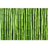 Vliesové fototapety bambus rozmer 375 cm x 250 cm
